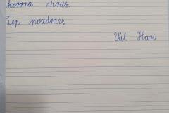 Radi_pisemo_z_roko_38
